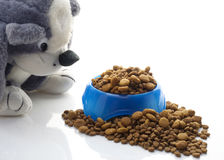 Bowl of kibble for dogs Stock Photography