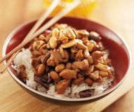 Bowl of kung pao chicken with chopsticks. Shot close up with selective focus Stock Images