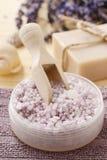 Bowl of lavender sea salt Royalty Free Stock Images