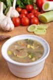 Bowl of Leek Soup Royalty Free Stock Photo