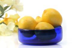 Bowl of lemons. Lemons in a bowl stock photography