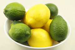 Bowl of Lemons and Limes Royalty Free Stock Images