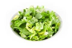 Bowl of lettuce. White bowl full of fresh lettuce on a white background stock images