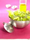 Bowl of lettuce Royalty Free Stock Photo