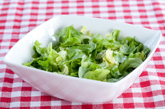 Bowl of lettuce Stock Photo