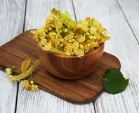 Bowl with Linden flowers Royalty Free Stock Photography