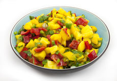 Bowl of Mango Salsa--Isolated on White. Turquoise-colored bowl filled with sweet and tangy, colorful mango salsa, which consists of diced mangoes, red peppers Stock Image