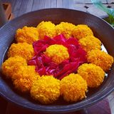 Bowl of marigolds stock photography
