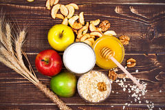 Bowl of Milk and Oat Flakes, Apples and Honey. View from above, top studio shot of fruit background Royalty Free Stock Photo
