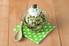 Bowl of mint ice cream with chocolates Stock Images