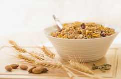 Bowl of Mixed Breakfast Cereal. Stock Photography
