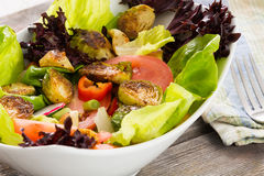 Bowl of mixed green salad with brussels sprouts Royalty Free Stock Images
