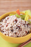 Bowl of mixed rice Stock Images