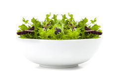 Bowl of mixed Salad Royalty Free Stock Photo
