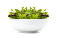 Bowl of mixed Salad Royalty Free Stock Photo