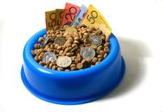 Bowl of money dog food. Dog food / Cat food, bowl of money Stock Photos