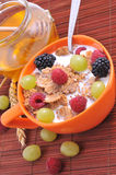 Bowl of muesli Stock Image