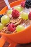 Bowl of muesli Stock Photography