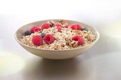 Bowl of muesli and berries Stock Photos