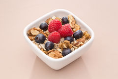 Bowl with muesli and berries Royalty Free Stock Photos