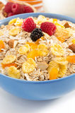 Bowl of muesli cereals Royalty Free Stock Photo
