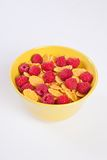 Bowl of muesli with fresh berries Royalty Free Stock Images