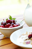 Bowl of muesli with fresh fruits Royalty Free Stock Image