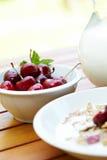 Bowl of muesli with fresh fruits Royalty Free Stock Image
