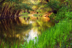 Beautiful Zagyva river in spring. The riverbank of zagyva river in early spring Stock Photography