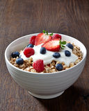 Bowl of muesli and yogurt Royalty Free Stock Image