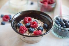 Bowl of muesli and yogurt with fresh berries Stock Images