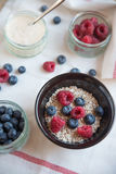 Bowl of muesli and yogurt with fresh berries Stock Images