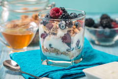 Bowl of muesli and yogurt with fresh berries Royalty Free Stock Images