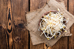 Bowl with Mungbean Sprouts Stock Photography