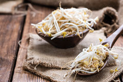Bowl with Mungbean Sprouts Stock Photos