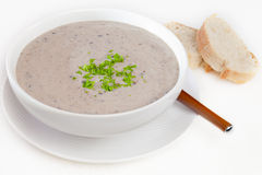 Mushroom Soup with Bread royalty free stock photos