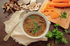 Bowl with mushroom soup Royalty Free Stock Photo
