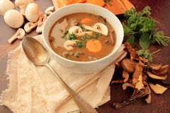 Bowl with mushroom soup Royalty Free Stock Photography