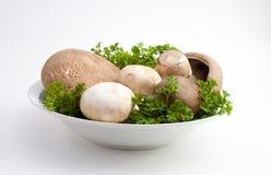 Bowl of mushrooms Royalty Free Stock Image