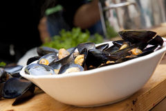 Bowl of mussels Royalty Free Stock Photo