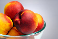 Bowl with nectarine Royalty Free Stock Images