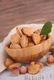 Bowl of nuts Royalty Free Stock Image