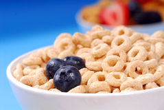 Bowl of oat cereal with blueberries Stock Images