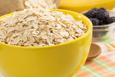 Bowl of oat flake Royalty Free Stock Photo