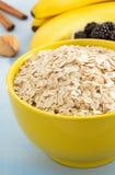 Bowl of oat flake Stock Image