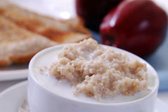 Bowl of Oatmeal Stock Image