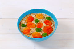 Bowl of oatmeal porridge Stock Photography