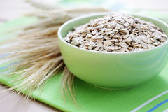 Bowl of oats Stock Image