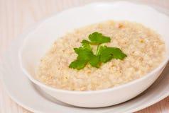 Bowl of oats porridge Stock Images