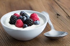 Bowl Of Fresh Mixed Berries And Yogurt Royalty Free Stock Photography